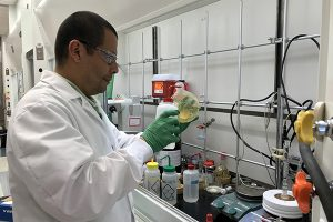 Postdoctoral researcher Alfredo Picado, Ph.D., works at the SGC lab at the UNC Eshelman School of Pharmacy.